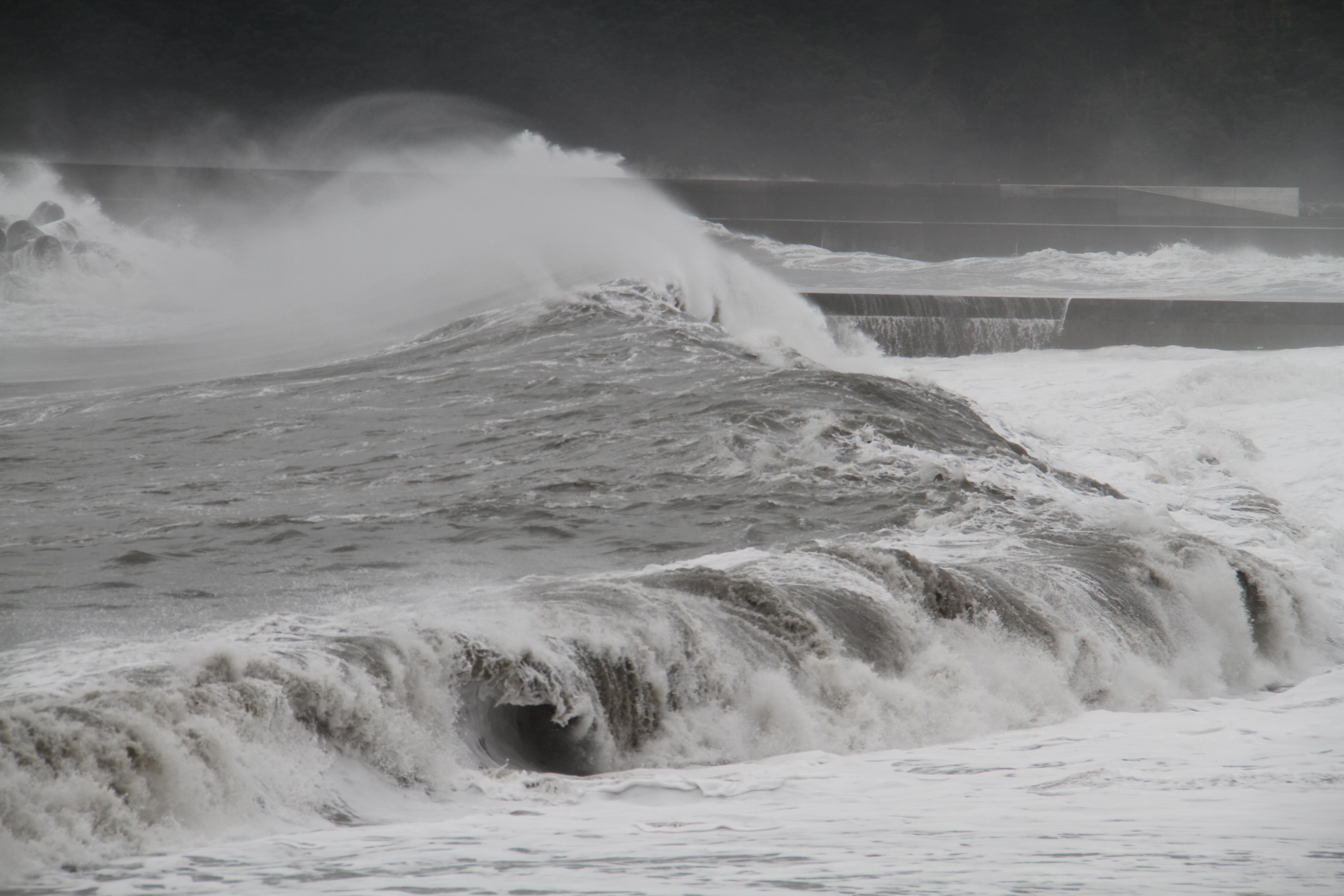 四万十の宿みんなのブログ: 暴風...